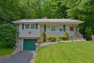 36 Goldfinch Ln, West Milford Twp., NJ 07421 (MLS #3326480) :: The Dekanski Home Selling Team