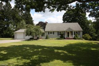 68 Stephens State Park, Mount Olive Twp., NJ 07840 (MLS #3332640) :: The Dekanski Home Selling Team