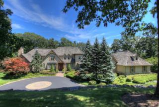 4 Timber Ridge Rd, Mendham Twp., NJ 07931 (MLS #3332722) :: The Dekanski Home Selling Team