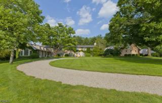 201 Pleasant Valley Rd, Mendham Boro, NJ 07945 (MLS #3334786) :: The Dekanski Home Selling Team