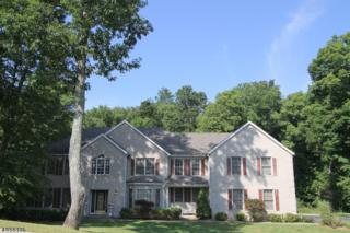 9 Greenfield Hl, Sparta Twp., NJ 07871 (MLS #3335747) :: The Dekanski Home Selling Team