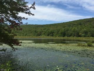 14 Mountain Rd, Hampton Twp., NJ 07860 (MLS #3335922) :: The Dekanski Home Selling Team