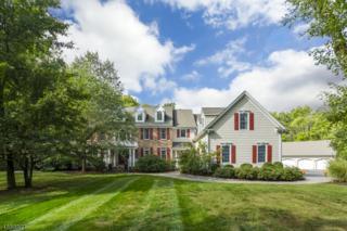 23 Birchwood Dr, Montgomery Twp., NJ 08540 (MLS #3338213) :: The Dekanski Home Selling Team
