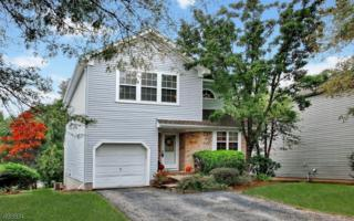 19 Cliffside Ct, Hardyston Twp., NJ 07419 (MLS #3340217) :: The Dekanski Home Selling Team
