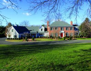 154-3 Mountainview Lane, Bernardsville Boro, NJ 07924 (MLS #3340795) :: The Dekanski Home Selling Team