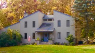 61 Brookside Dr, Sparta Twp., NJ 07871 (MLS #3341271) :: The Dekanski Home Selling Team
