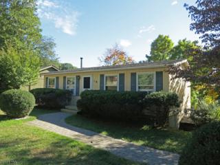 4 Pleasant Rd, High Bridge Boro, NJ 08829 (MLS #3341522) :: The Dekanski Home Selling Team