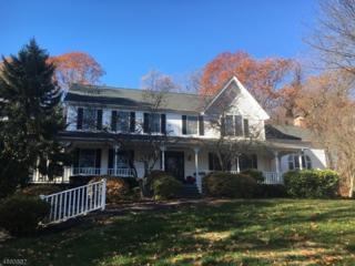 535 Naughright Rd, Washington Twp., NJ 07853 (MLS #3341739) :: The Dekanski Home Selling Team