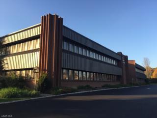 65 Mountain Blvd, Unit 202, Warren Twp., NJ 07059 (MLS #3343556) :: The Dekanski Home Selling Team