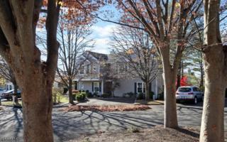 427 Cardinal Ln, Bedminster Twp., NJ 07921 (MLS #3344555) :: The Dekanski Home Selling Team