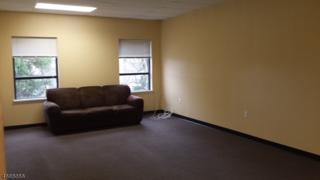 230 Us-206, Mount Olive Twp., NJ 07836 (MLS #3345956) :: The Dekanski Home Selling Team