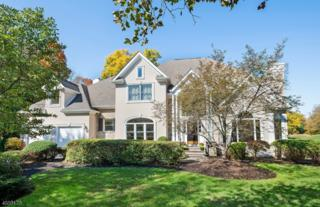5 Cypress Point Ct, Montgomery Twp., NJ 08558 (MLS #3348866) :: The Dekanski Home Selling Team