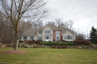 17 Newstar Ridge, Sparta Twp., NJ 07871 (MLS #3350691) :: The Dekanski Home Selling Team