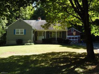 58 Water St, Tewksbury Twp., NJ 08833 (MLS #3351754) :: The Dekanski Home Selling Team