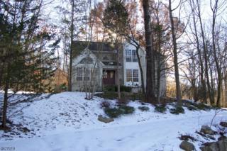 6 James Rd, Randolph Twp., NJ 07869 (MLS #3354071) :: The Dekanski Home Selling Team