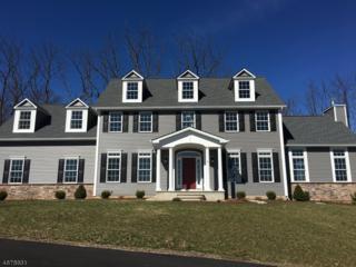 4 Ashton Ct, Raritan Twp., NJ 08822 (MLS #3355737) :: The Dekanski Home Selling Team