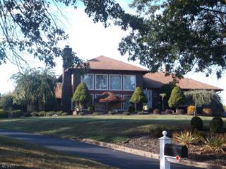 27 Caspar Berger Rd, Readington Twp., NJ 08889 (MLS #3355857) :: The Dekanski Home Selling Team