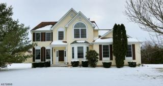 28 Deborah Dr, Franklin Twp., NJ 08873 (MLS #3356619) :: The Dekanski Home Selling Team