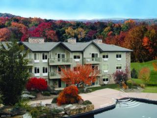 2 Chamonix Dr, Unit 353, Vernon Twp., NJ 07462 (MLS #3358015) :: The Dekanski Home Selling Team