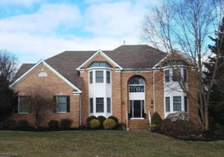 25 Talmadge Ln, Bernards Twp., NJ 07920 (MLS #3358812) :: The Dekanski Home Selling Team