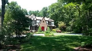 11 Arbor Way, Washington Twp., NJ 07853 (MLS #3359435) :: The Dekanski Home Selling Team