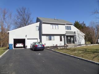25 Elmendorf Cir, Hillsborough Twp., NJ 08844 (MLS #3362258) :: The Dekanski Home Selling Team