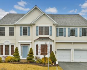 49 Lafayette Cir, Totowa Boro, NJ 07512 (MLS #3362523) :: The Dekanski Home Selling Team