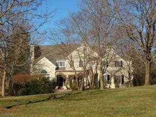 15 Augusta Ct, Montgomery Twp., NJ 08558 (MLS #3362755) :: The Dekanski Home Selling Team