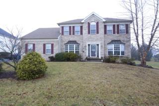 443 Hamilton Dr, Greenwich Twp., NJ 08886 (MLS #3363382) :: The Dekanski Home Selling Team