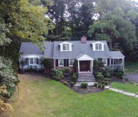 10 Brantwood Ter, Millburn Twp., NJ 07078 (MLS #3363445) :: The Dekanski Home Selling Team
