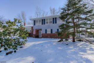 42 Parkview Dr, Roxbury Twp., NJ 07876 (MLS #3363945) :: The Dekanski Home Selling Team