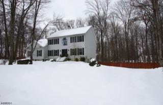 21 Eagle Nest Rd, Green Twp., NJ 07860 (MLS #3364145) :: The Dekanski Home Selling Team