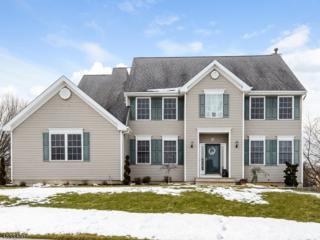 54 Walter Way, Greenwich Twp., NJ 08886 (MLS #3364225) :: The Dekanski Home Selling Team