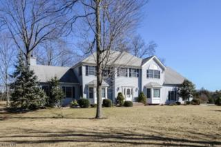 14 Eagle Drive, Raritan Twp., NJ 08551 (MLS #3364239) :: The Dekanski Home Selling Team