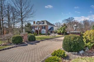 15 White Tail Way, Clinton Twp., NJ 08801 (MLS #3364339) :: The Dekanski Home Selling Team