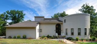1619 Mountain Top Rd, Bridgewater Twp., NJ 08807 (MLS #3364561) :: The Dekanski Home Selling Team
