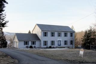 14 Valley Dr N, Vernon Twp., NJ 07418 (MLS #3364745) :: The Dekanski Home Selling Team
