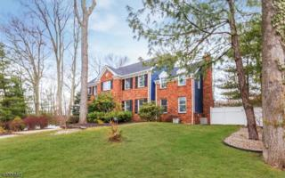 235 Kings Ct, Mountainside Boro, NJ 07092 (MLS #3364848) :: The Dekanski Home Selling Team
