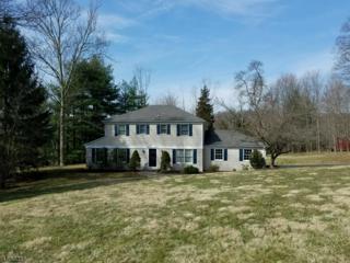 1413 Drum Hill Rd, Bridgewater Twp., NJ 08836 (MLS #3365170) :: The Dekanski Home Selling Team