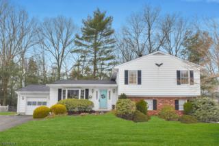 8 Renault Rd, West Milford Twp., NJ 07480 (MLS #3365576) :: The Dekanski Home Selling Team