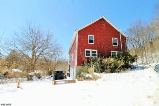 1 Quenby Mountain Rd, Liberty Twp., NJ 07838 (MLS #3365642) :: The Dekanski Home Selling Team