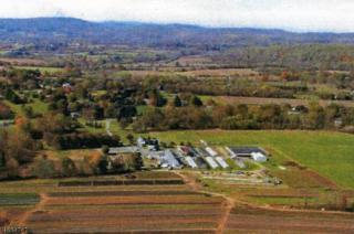 610 Little York Mount Pleas, Alexandria Twp., NJ 08848 (MLS #3365764) :: The Dekanski Home Selling Team