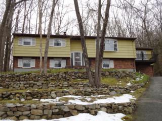 42 Hickory Rd, Ringwood Boro, NJ 07456 (MLS #3366258) :: The Dekanski Home Selling Team