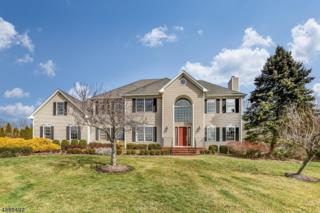 13 Poppy Pl, Long Hill Twp., NJ 07946 (MLS #3366409) :: The Dekanski Home Selling Team