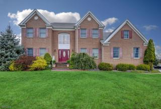 7 Gumble Court, Hillsborough Twp., NJ 08844 (MLS #3366561) :: The Dekanski Home Selling Team
