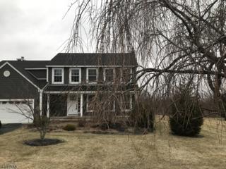 41 Eric Trl, Vernon Twp., NJ 07461 (MLS #3367070) :: The Dekanski Home Selling Team