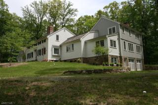 18 Red Oak Row, Chester Twp., NJ 07930 (MLS #3367383) :: The Dekanski Home Selling Team
