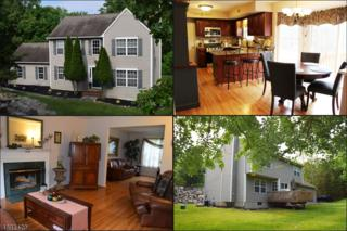 1 Cliffside Way, Andover Twp., NJ 07821 (MLS #3367747) :: The Dekanski Home Selling Team