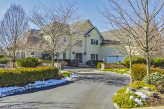 36 Blue Heron Way, Montgomery Twp., NJ 08558 (MLS #3368504) :: The Dekanski Home Selling Team