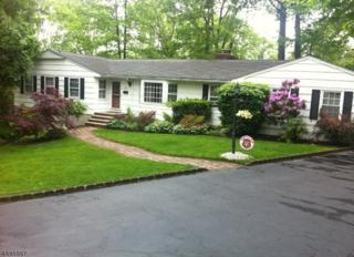 24 Fairview Ter, Wayne Twp., NJ 07470 (MLS #3371253) :: The Dekanski Home Selling Team